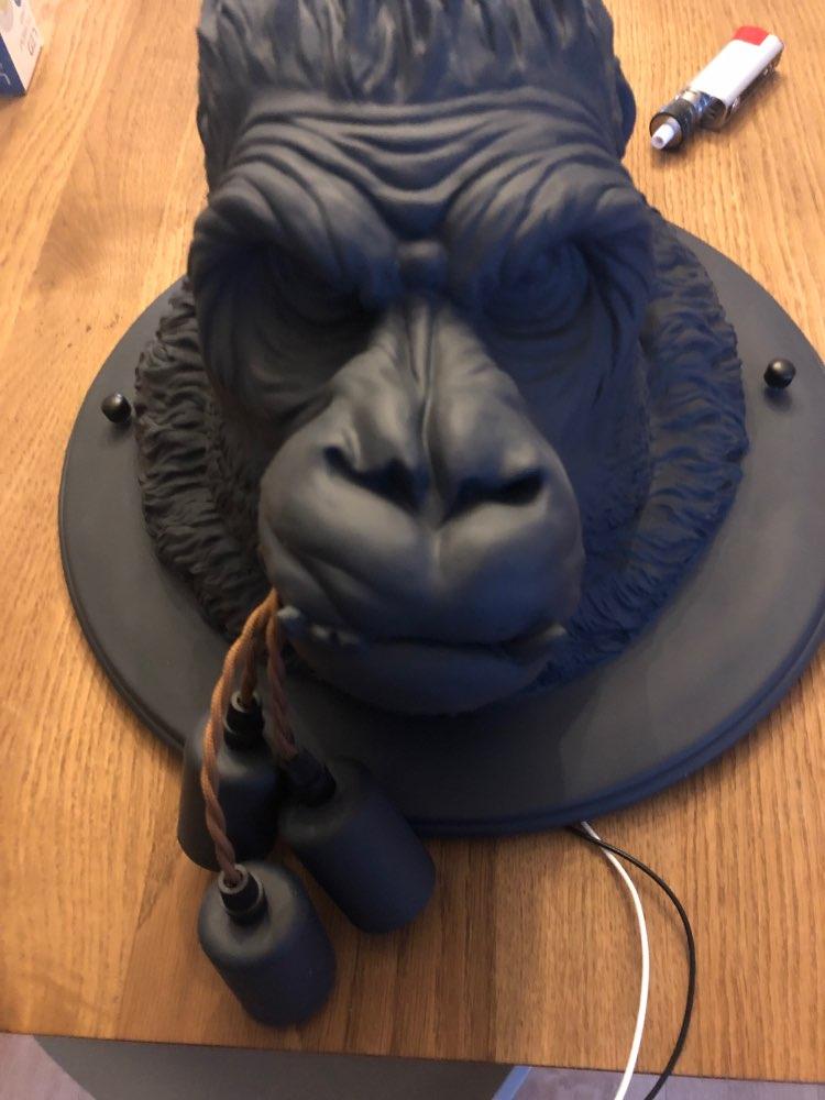 -- Resina Gorilla Moderna