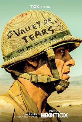 泪之谷的海报