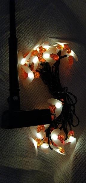 5M Solar Lights String 20 Led Honey Bee Shape Solar Powered Fairy Lights photo review