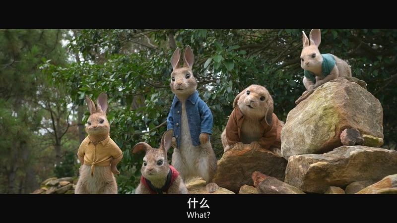 2018动画冒险《比得兔》BD1080P.英语中英双字截图;jsessionid=k254KExAnpRJArX3jQ6h-X0qZV1xbNXLHxOtUN-K