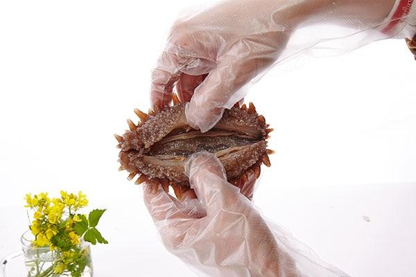 干海参泡发的恰当方式-养生法典
