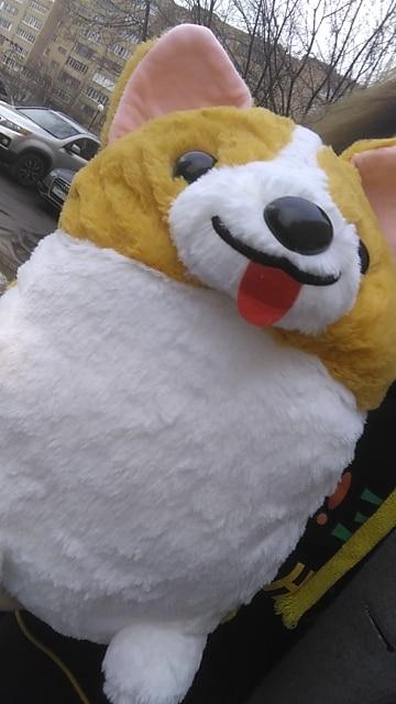 38/45/60cm Lovely Corgi Dog Plush Toy Stuffed Soft Animal Cartoon Pillow Cute Christmas Gift for Kids Kawaii Valentine Present