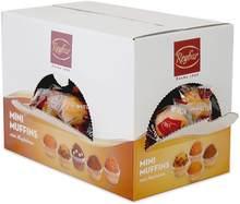 ESSENZIA - Mini muffins, petits cupcakes au chocolote-coffret 900gr emballés individuellement.