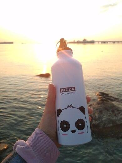 Cartoon Animal Water Bottle Portable Hydro Flask Lovely Sport Hiking Biking School Water Bottle For Children Kids Water Bottle|Water Bottles|   - AliExpress