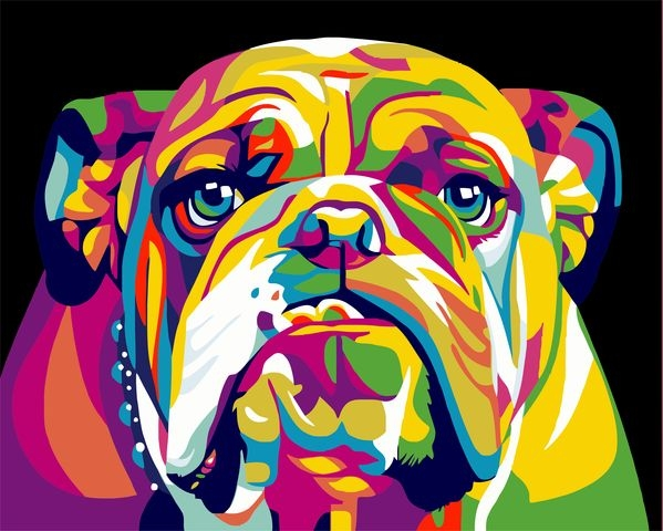 Painting By Numbers Rainbow Bulldog, 40x50 Cm