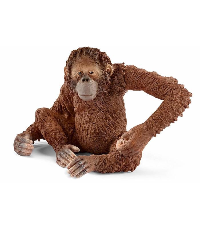 Orangutan Female Toy Store Articles Created Handbook