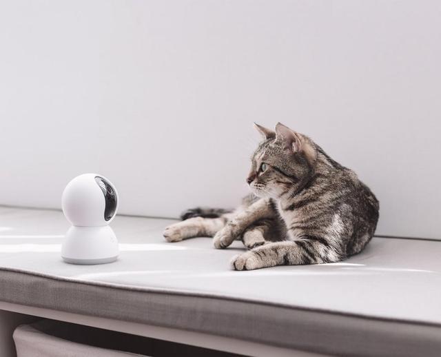 Xiaomi Mijia caméra 360 sécurité maison 1080P Vision nuit intelligente maison blanc