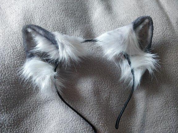 -- Artesanal Americano Shorthair