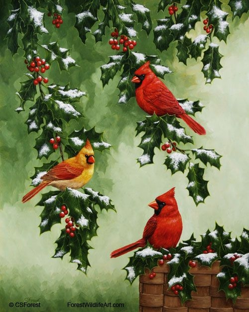 Painting On The Numbers Winter Birds, 40x50 Cm