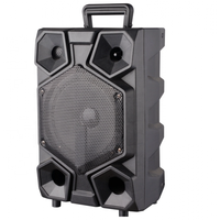 Acoustic system Eltronic EL8-08, combination, amplifier, Bluetooth