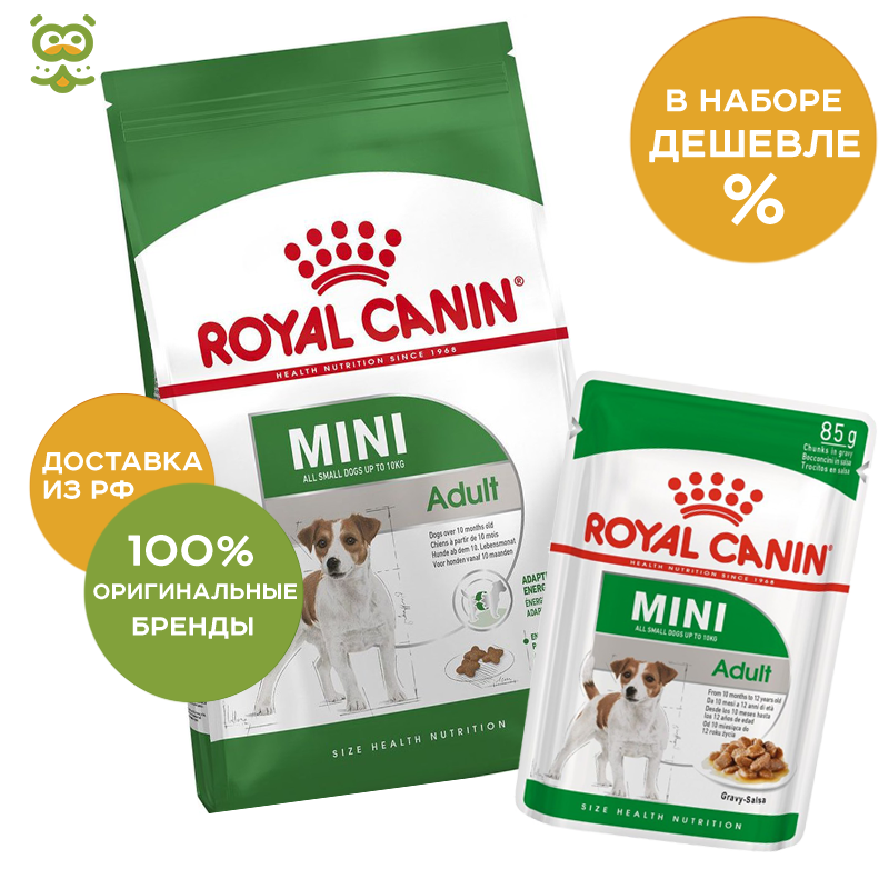 Dog Food Royal Canin Mini Adult, 8 kg; Dog wet canned food Royal Canin Mini Adult  (sauce), 24*85g