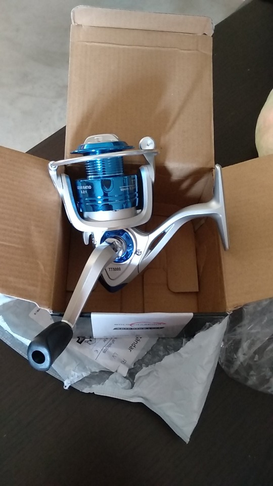 Carretilhas de pesca Saltwater Fishing Spinning