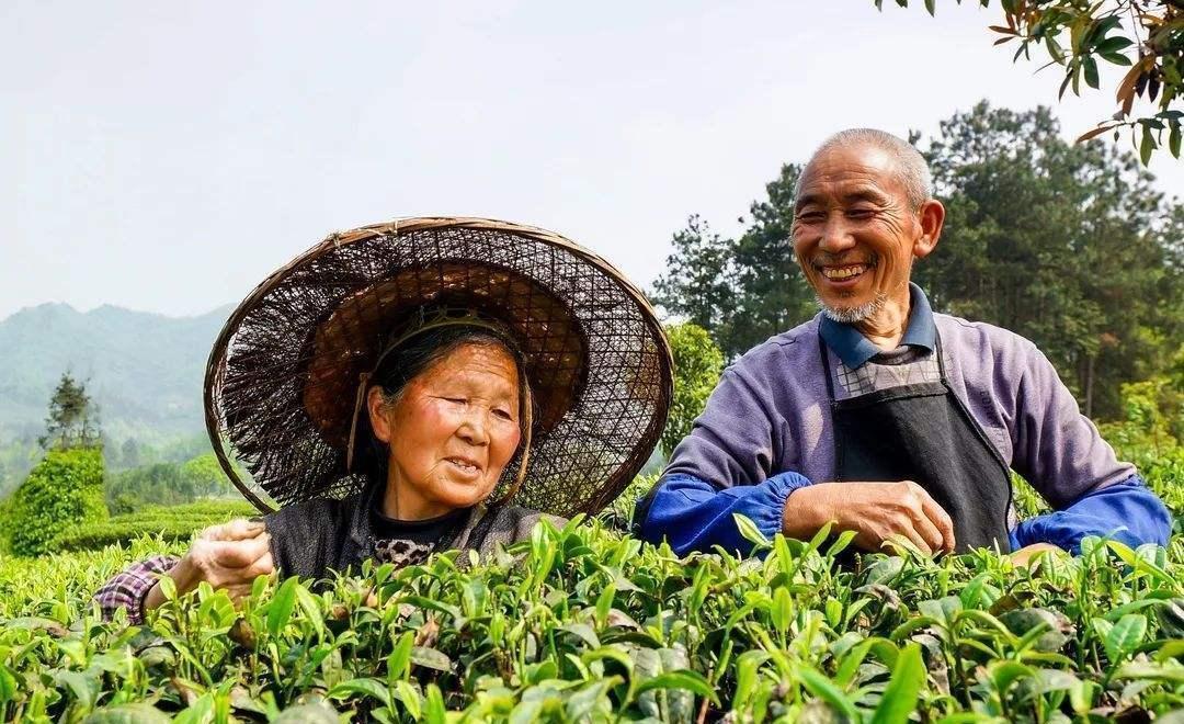 农村土地出让新的改变,生活保障更好?农民:好消息插图(4)