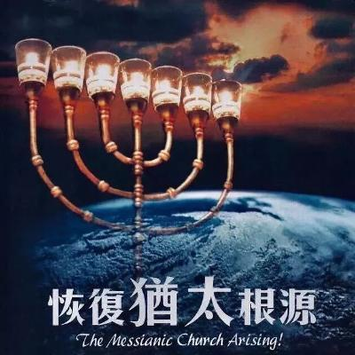 《恢複猶太根源》音频 第二章 树根与树枝