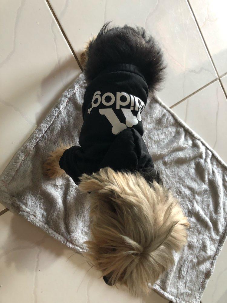 Addidog Hoodies x10 styles photo review