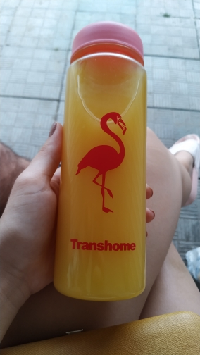 Transhome Flamingo Water Bottle 500ml Plastic Bottle for Water Bottles with Tea Infuser Sports Drinking Water Bottle Drinkware-in Water Bottles from Home & Garden on AliExpress