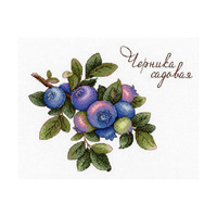 Нв 656 set for embroidery MP studio 'gifts of nature. Blueberry Garden '15*20 cm