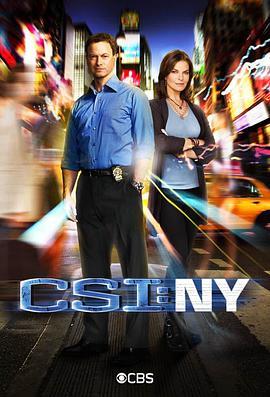犯罪现场调查:纽约第八季
