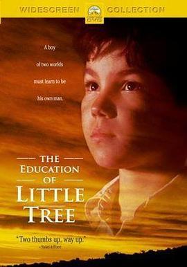 小树的故事