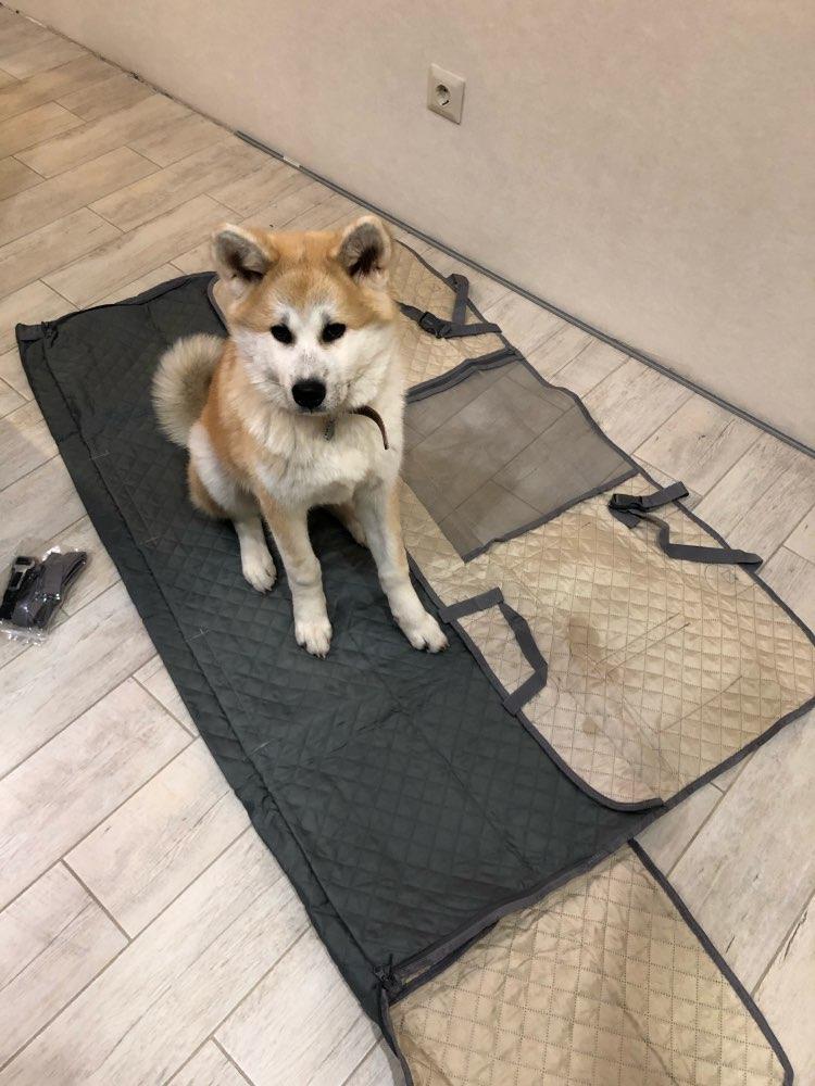 Transportador de cães Traseira Protector Bolsos