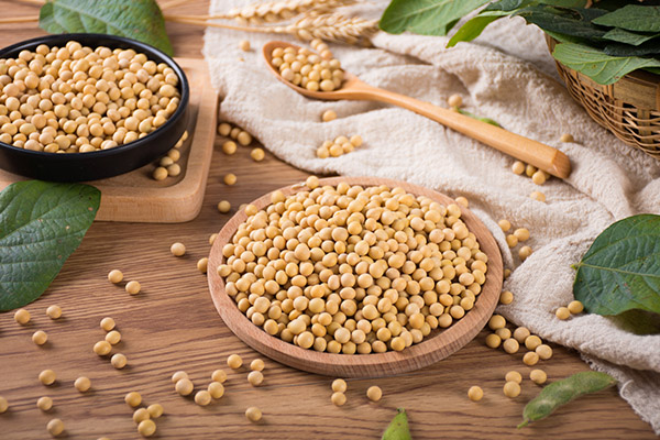 豆油的作用与功效-养生法典