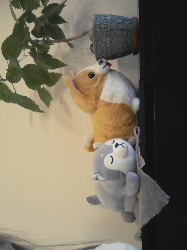 35-75cm Cute Husky& Shiba Inu Corgi Plush Toy Stuffed Soft Animal Dog Pillow Christmas Gift Peluche for Kids GirlsKawaii Present
