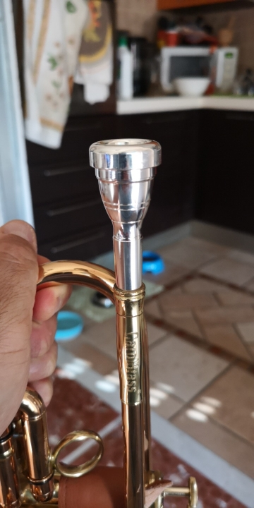 Trompete Grátis Grátis Moonembassy