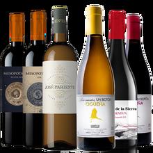 Pack Wine tasting from Spain, 6 different Wines Tempranillo, Verdejo, Godello, Mencia, Rufete, Red wine & white Wine