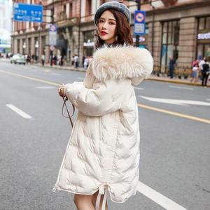 Image 2 - Winter hot style embroidered white duck down embroidered down jacket female new fashion 2019 womens long coat