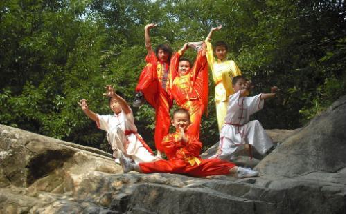 中华传统武术具有以下四种特点,武术特点分析-养生法典