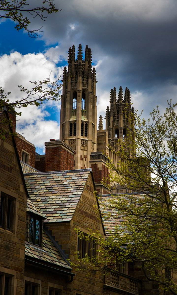 《耶鲁大学》封面图片