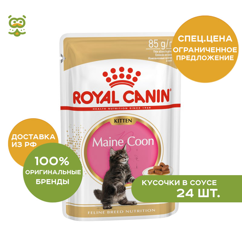 Фото - Cat wet food Royal Canin Maine Coon Kitten spider for Maine Coon cats (pieces in sauce) 24*85 gr moon maine