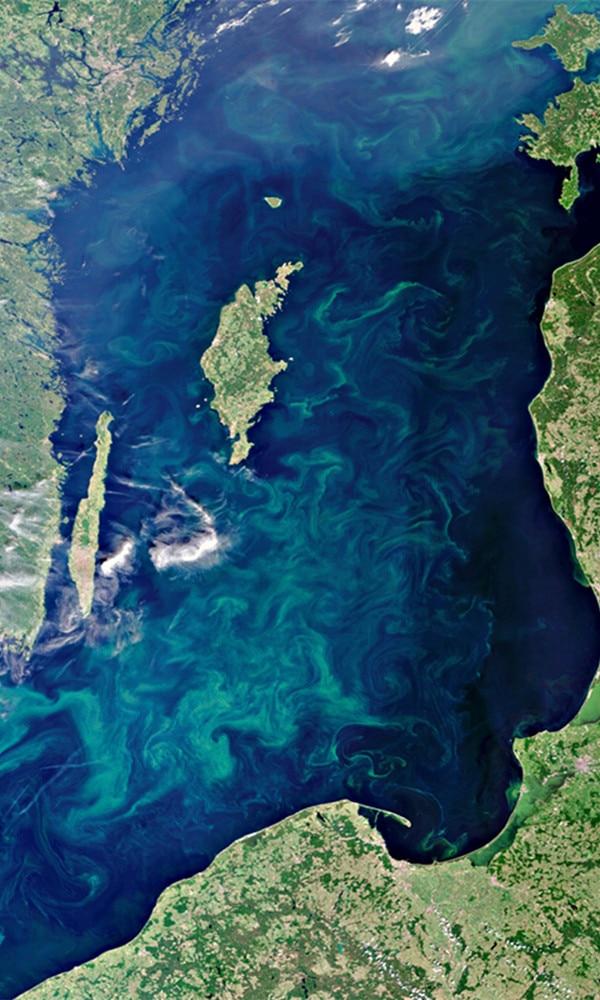 《波罗的海》封面图片