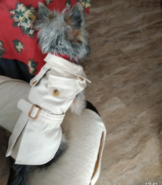 Simply Spring Dog Coat photo review