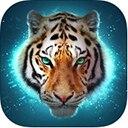 老虎在线RPG模拟器