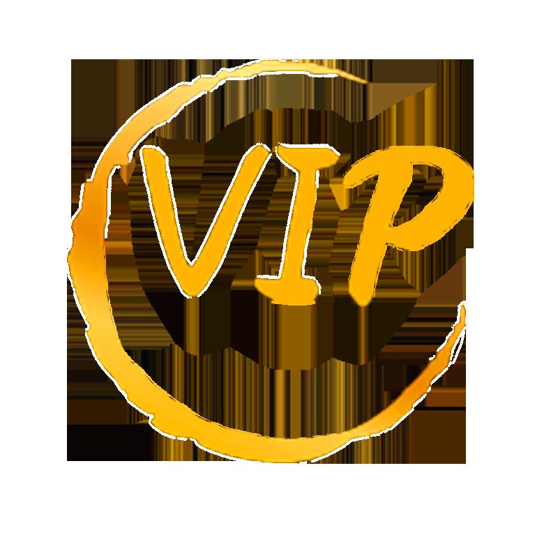 2020 Dropshipping VIP