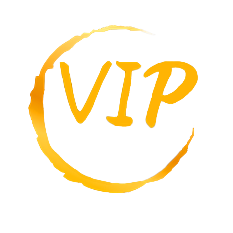 2020 Dropshipping Products VIP
