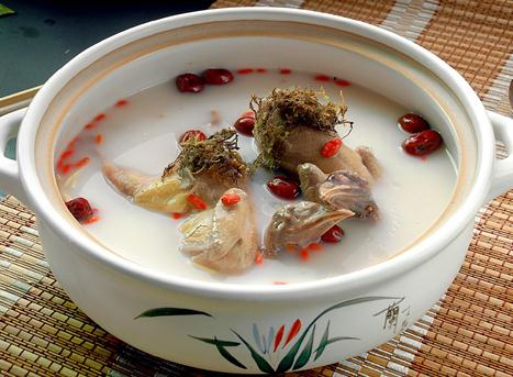 红枣枸杞鸽子汤的做法以及它的功效-养生法典