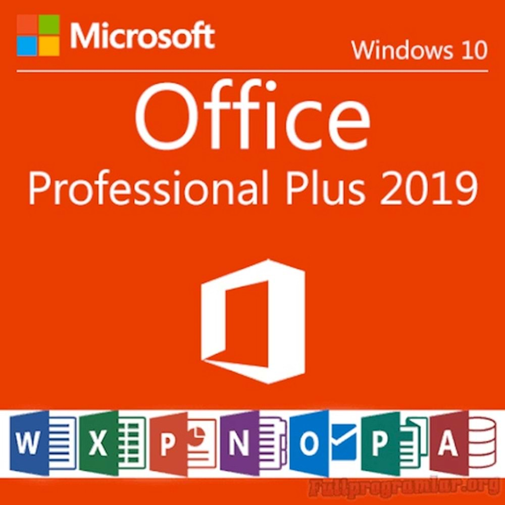 Ms Office Professional Plus 2019 Cheap License
