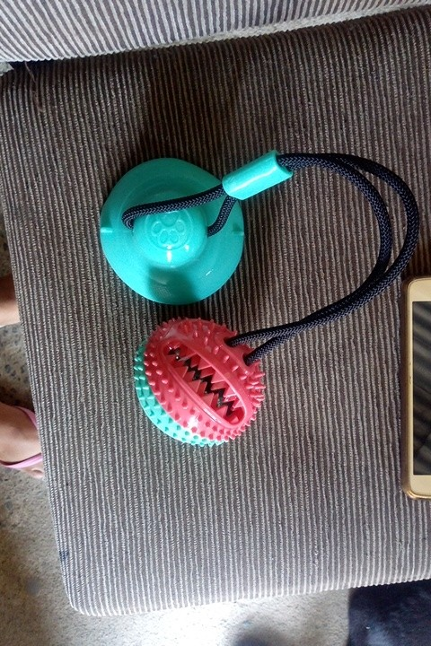 Suction Cup Tugger Dog Toy photo review