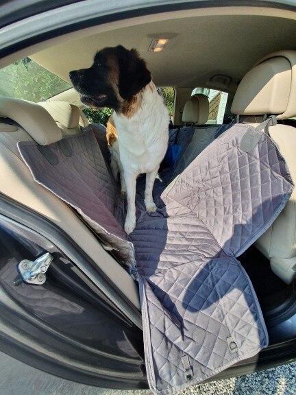Transportador de cães Hammock Cushion Cushion