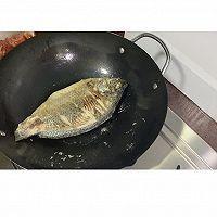 红烧番茄鱼的做法图解4