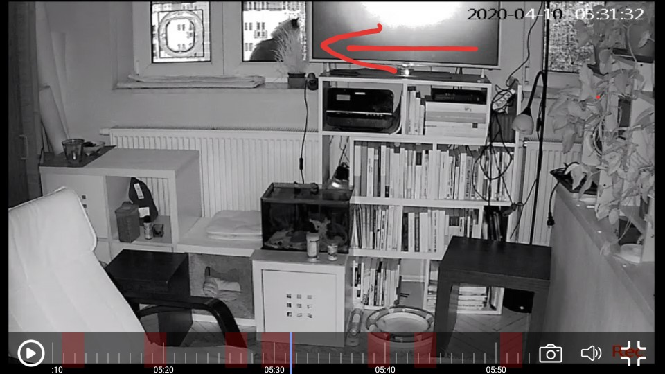 SDETER 1080P 720P IP Camera Security Camera WiFi Wireless CCTV Camera Surveillance IR Night Vision P2P Baby Monitor Pet Camera|Surveillance Cameras|   - AliExpress