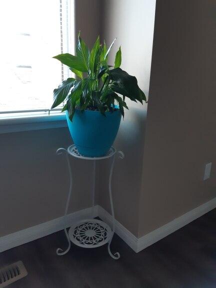 -- Simples Gardenpot Gardenpot
