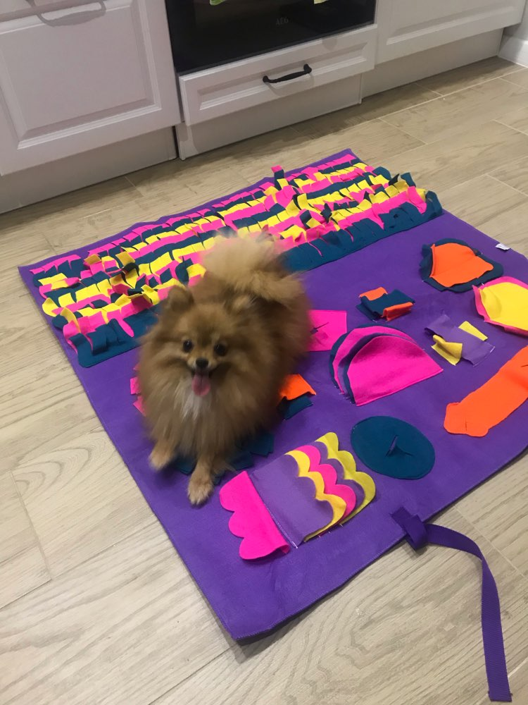 Snuffle Mat | Snuffle Mat for Dogs | Best Snuffle Mat for Dogs photo review