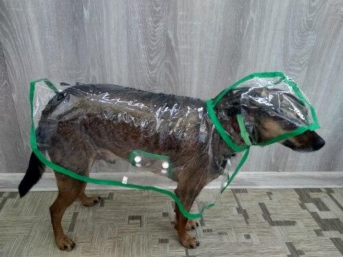 Small Dog Rain Jacket | Dog Rain Gear | Dog Raincoat with Hood photo review