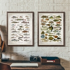 Fish Vintage Poster ...