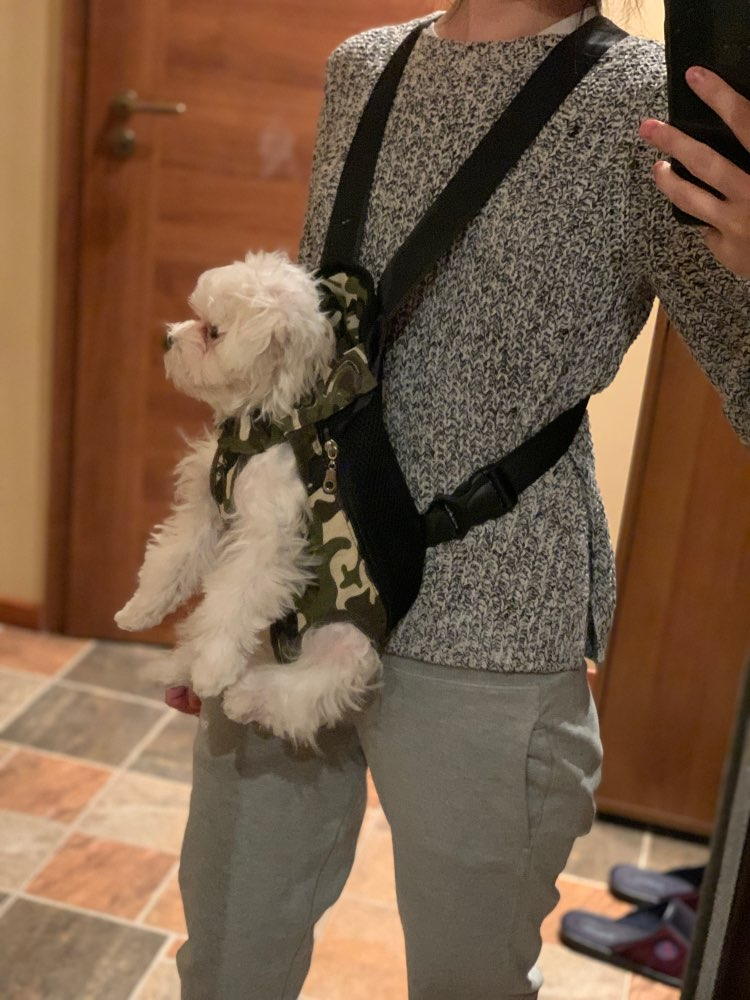 Pawaboo® Dog Carrier Backpack | Dog Carrier Front Backpack | Dog Carrier For Hiking photo review