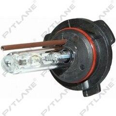 Лампа Ксенон HB4(9006) 12V-6000К Maxlum/Sho-me автомобильная, лампочки на авто (PS20640)