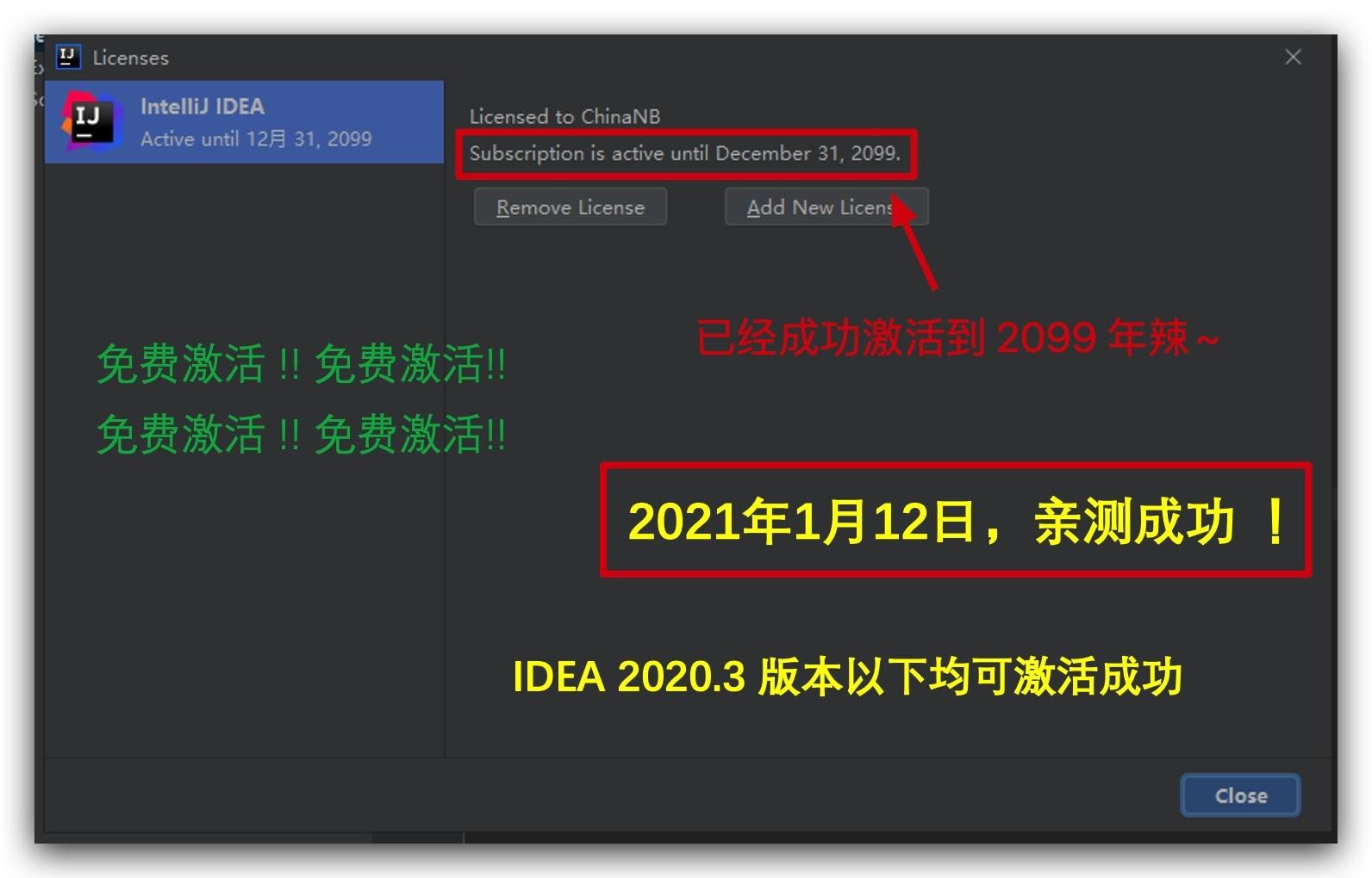 IDEA 2020.3.1版本激活注册成功画面